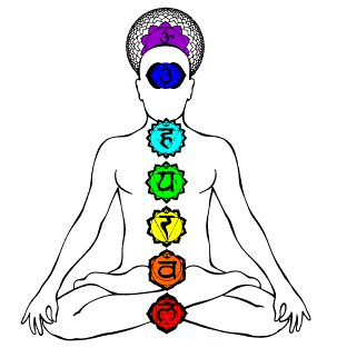 Seven main chakras and their placement along the spine