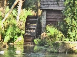 Juniper springs, hwy 40 Orlando Florida