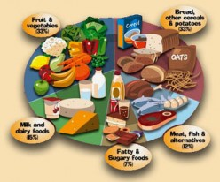 The Correct Balance of Carbs,Protein and Fats in our Diets