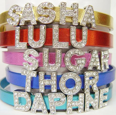 Personalized dog collars bring the bling!