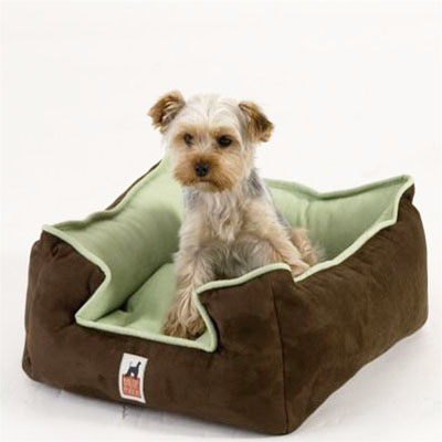 Dogs appreciate a soft bed to sleep on.