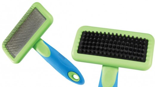 Slicker brushes with steel or rubber pins will penetrate a thick coat.
