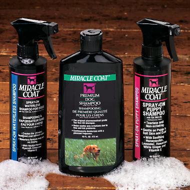 Miracle Coat dog shampoo detangles hair and adds shine!