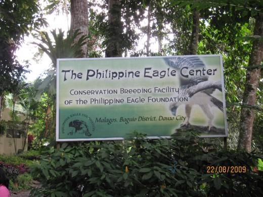 The Philippine Eagle Breeding Facility