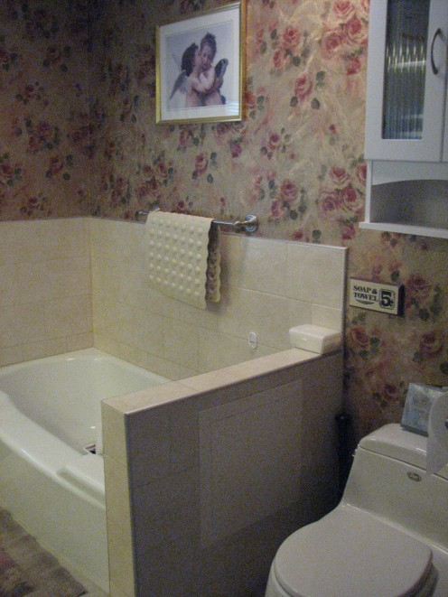 another view of the tub area