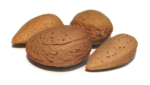 Nuts also make great brain foods. They are another good source of amino acids, not to mention they're yummy.
