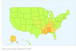 Google US Flu Map