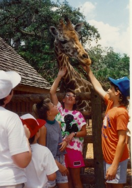 Petting the giraffe