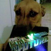 DVD Hound profile image