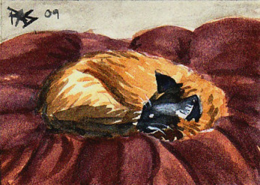 Cat Nap by Robert A. Sloan, watercolor.
