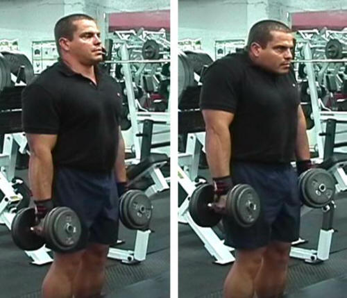 You can also do shrugs with dumbbells. I have done both dumbbell and barbell but I love doing dumbbell, not because it is easy but it provides more strength to my back.