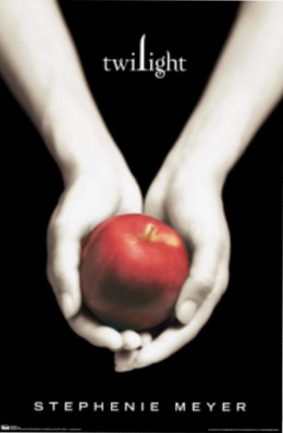 Twilight Book, 498 pages