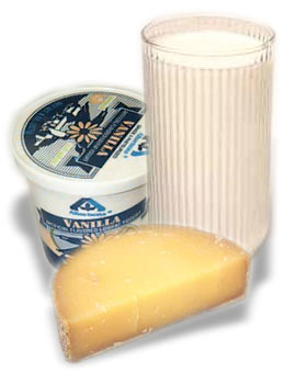 Milk, cheese, and butter cause lactose intolerance