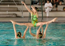 How to Enjoy a Synchronized Drill Team - Steppin' with Book Carts, Bathing Beauties, and Janet Jackson
