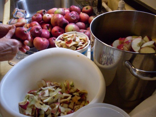 If you intend to use a food mill to separate the peels and pulp, just cut the apples into large pieces, core them, and put the pieces in a large pot. Otherwise, peel the apples, too.