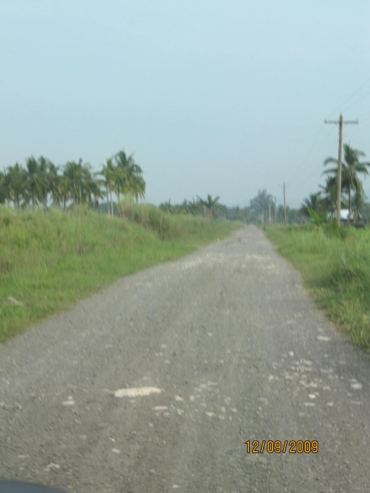Dirt road that leads to Por Cristo
