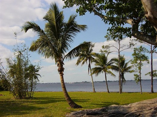 Caloosahatchee River taken from the grounds of the Edison and Ford Winter Estates.