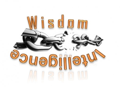 Wisdomvsintelligence