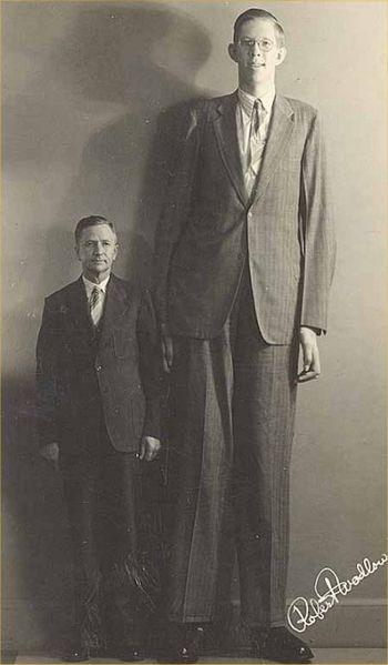 Late Robert Pershing Wadlow was taller than Mr. Bao Xishun at 8 feet 11.1 inches (2.72 metres)