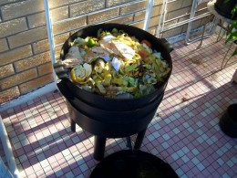 Can o worms for composting