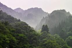 Nikko National Park Pristine Forests