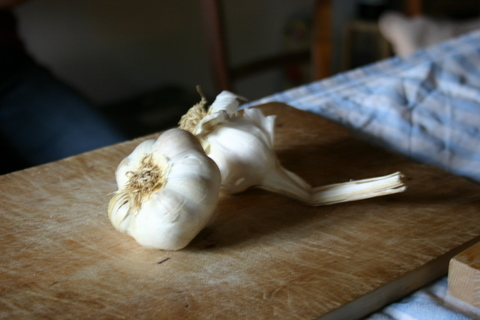 garlic are the main ingredients