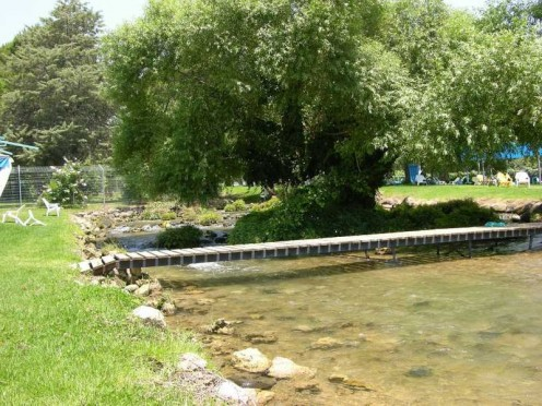 The River Dan in Isreal, nearby a kibbutz.