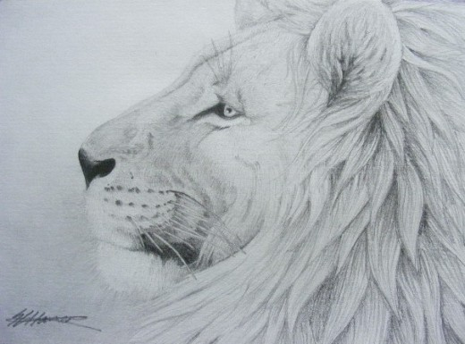 My latest work, 'Proud' (so you trust me!)This is after years of practice though!