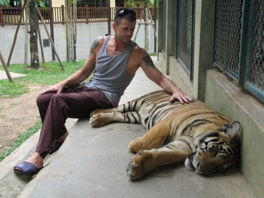 Thailand Tiger park