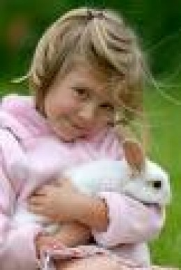 Easy to care for easy to love.  Child with her pet rabbit.      sawy-cafe.com photo credit