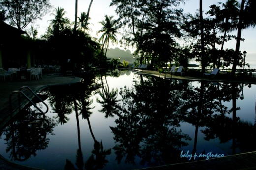 Stillness of the early morning reflected on a pool