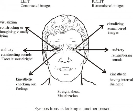 A Diagram that shows the eye movements.