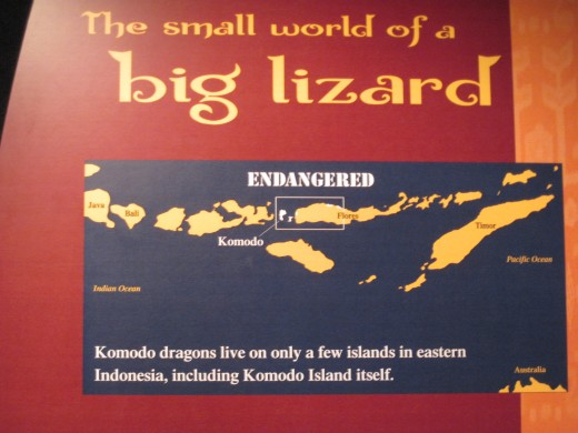 Map of Komodo Dragon Habitat