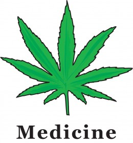 Cannabis - Marijuana - Pot - Weed - Herb