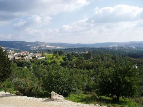 Eshtaol Forest, Rabin Park, Israel (public domain)