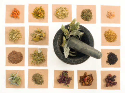 An assortment of herbs and roots
