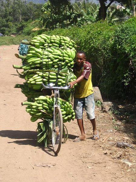 In Tanzania
