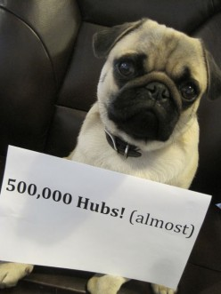Frank (our office mascot) has an announcement to make...