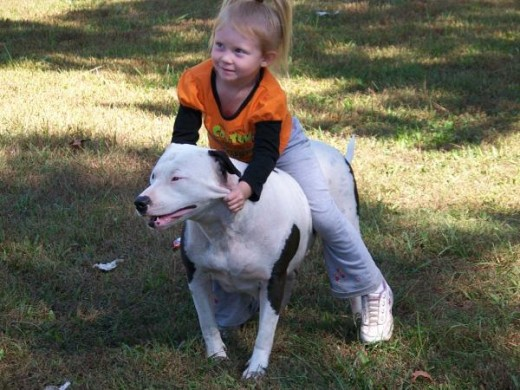 "A little girl with her ""bully breed"" dog."