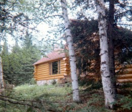 Partial view of front of Hibbard's log cabin in the woods