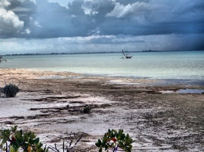 Taken At Mangrove Cay