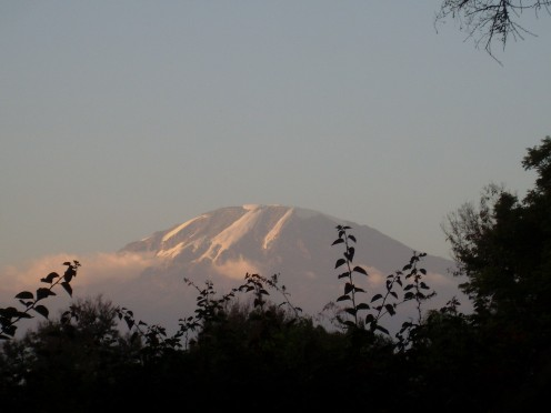 View of Kilimanjaro from my dining room