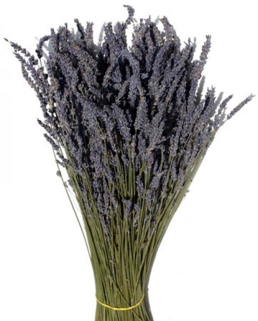 Lavender Image: http://driedflowersrus.com