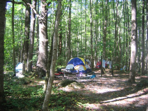 But think Bear safety and its best to stay in well established camp grounds especially if your new to camping.