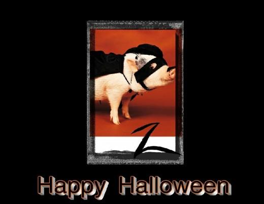 Halloween Zorro