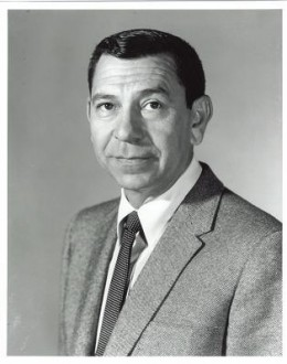 Jack Webb as Sergeant Joe Friday