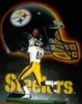 The Pittsburgh Steelers NFL football team