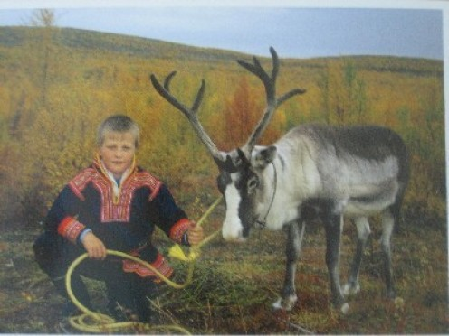 A Saami boy with a deer