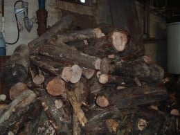 """In the beginning was the """"wood pile""""."""