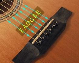 guitar notes for beginners. Black Bedroom Furniture Sets. Home Design Ideas